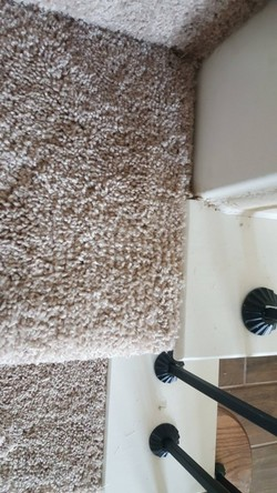Carpet Repair in Friendswood, TX