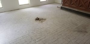 Before & After Tile Cleaning in Webster, TX (1)