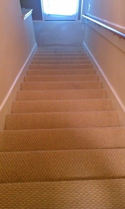 Carpet Cleaning in Fresno Texas by Almighty Services