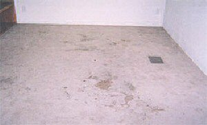 Carpet Cleaning in Santa Fe, TX