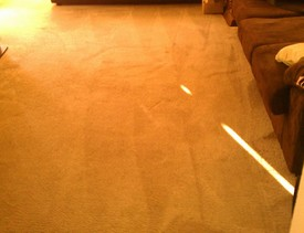 Before & After Carpet Cleaning in Webster, TX