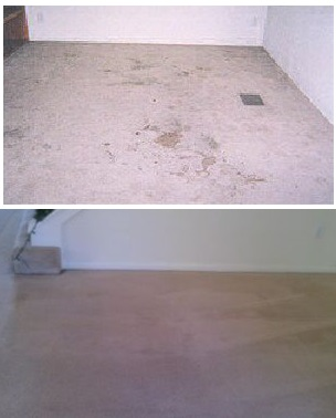 Carpet stain removal by Almighty Services